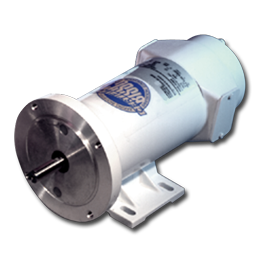 STF Foodgrade Washdown Motor Medium