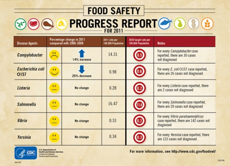 Food Safety Progress Report
